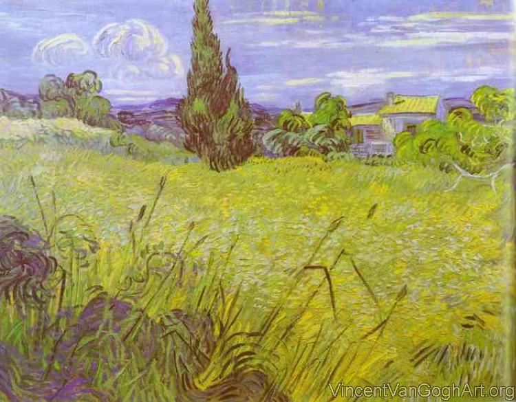 Green Wheat Field with Cypress, Saint-Remy